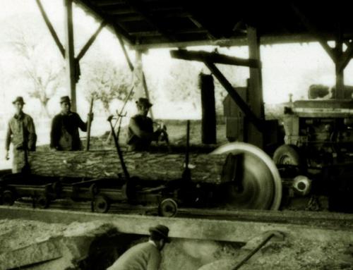 Complejo Forestal y Maderero Panguipulli obtuvo reconocimiento como Monumento Histórico