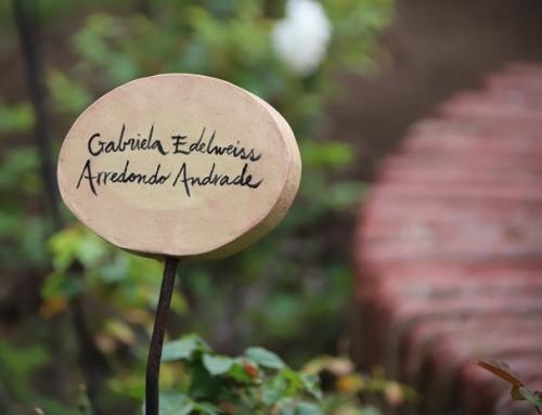 Corte de Apelaciones condenó a miembros de la DINA como autores de la desaparición de Gabriela Arredondo Andrade