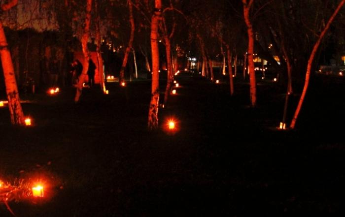 parque noche