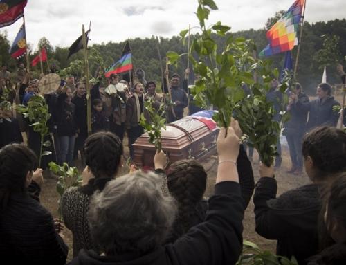 Villa Grimaldi invita a ciclo a distancia «Memoria, pueblos originarios y derechos humanos»
