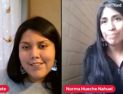 Norma Hueche: «La élite política cree que es un favor abrir el espacio a los pueblos indígenas»